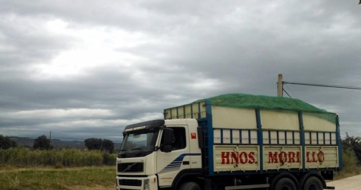 camión volquete de hermanos morillo transportando estiércol